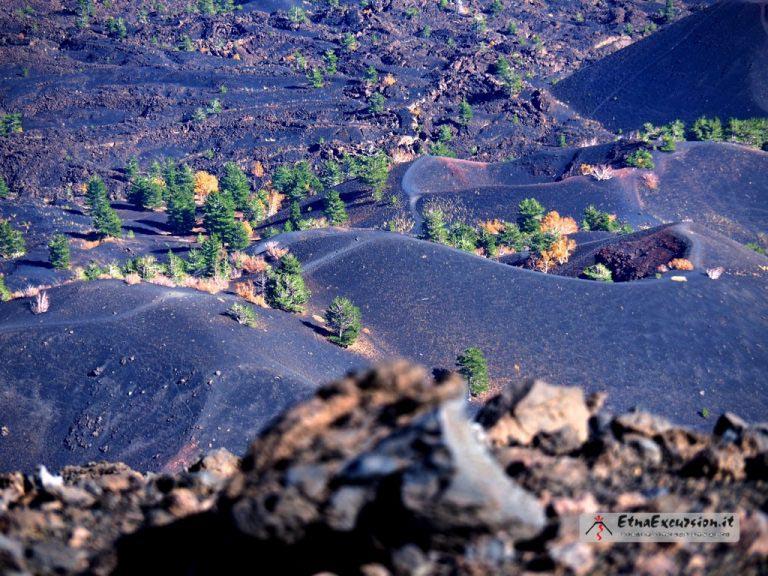 Etna Grantour
