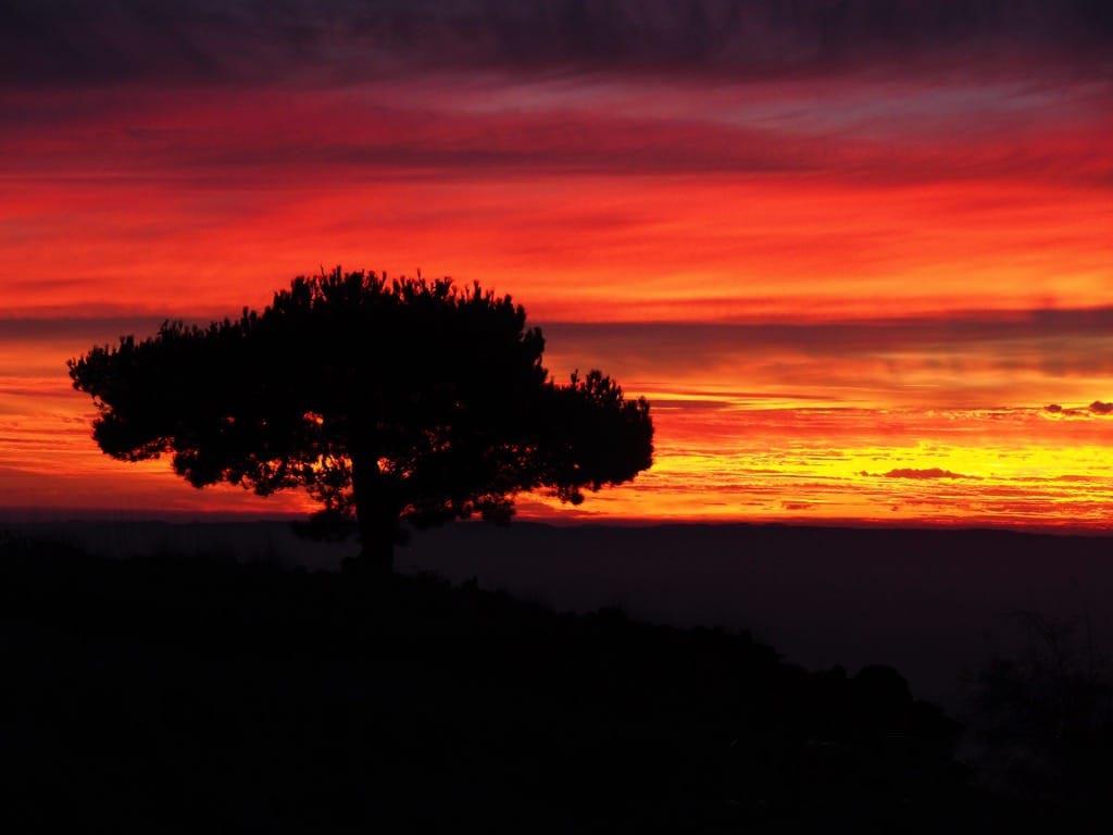Etna Sunset 1